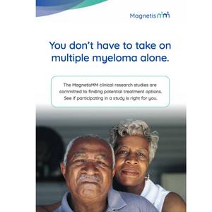 MagnetisMM Program